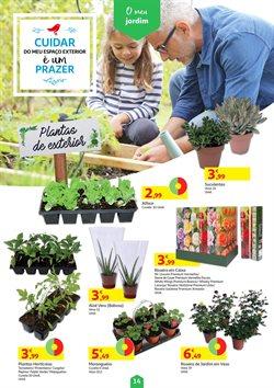 Folheto Auchan ( Publicado hoje )