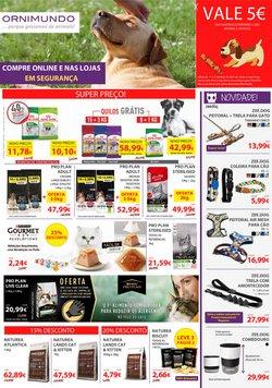 Ofertas de Bricolage, jardim e construção no folheto Ornimundo (  Expira hoje)