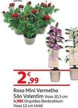 Oferta de Rosa por 2.99€
