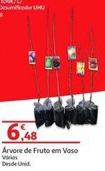 Oferta de Árvores por 6.48€