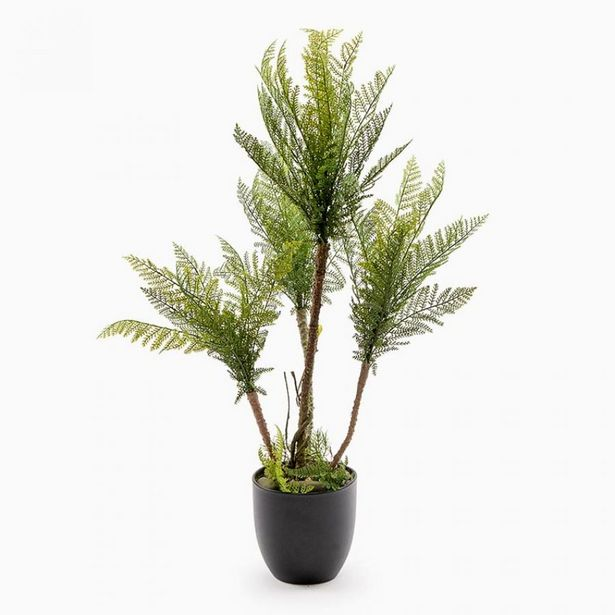 Oferta de Planta Artificial SAMAMBAIA A.79cm por 31,49€