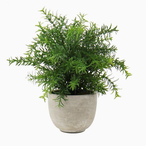 Oferta de Planta Artificial ALECRIM A.31cm por 10,49€