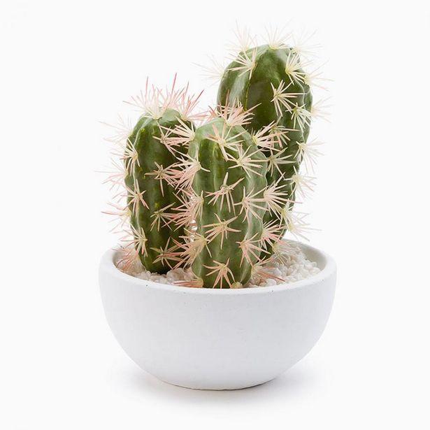 Oferta de Planta Artificial CACTO A.18,5cm por 13,99€